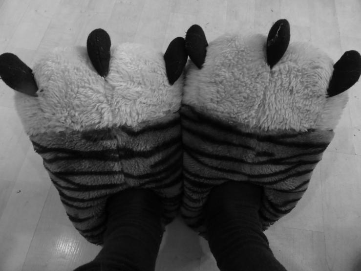 Schuhe1